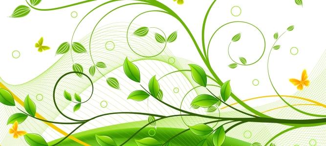 Yeşil Çiçek Tasarım